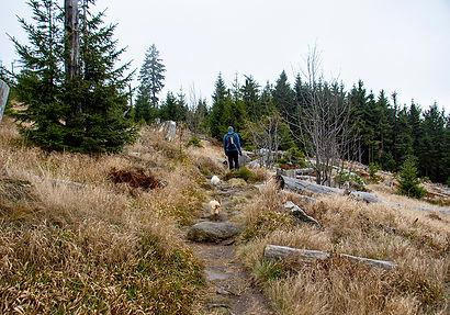 Wanderung Dreiländereck