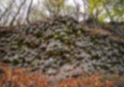 Basaltprismenwand