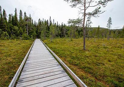 Fulufjället Nationalpark
