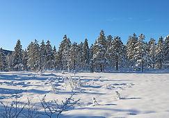 Winterwunderland Norwegen