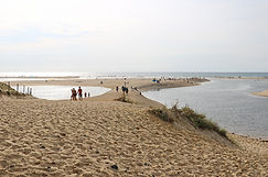 MündungCourant d'Huchet