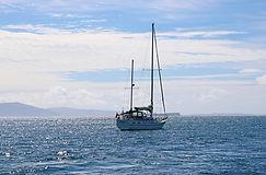 Bootstour Treshnis Islands