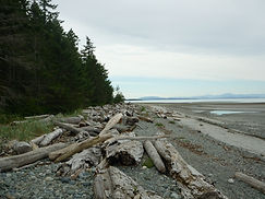 Miracle Beach, Vancouver Island
