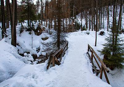 Brocken-Wanderung - über Eckerloch