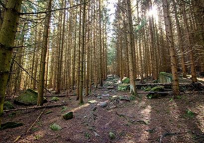 Wanderung Ottofelsen