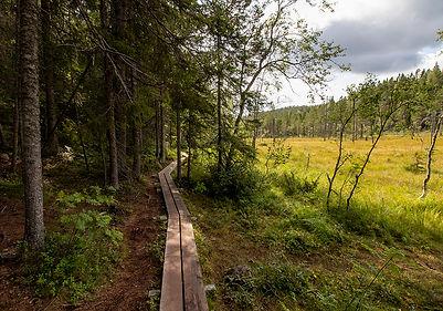 Skuleskogen Nationalpark