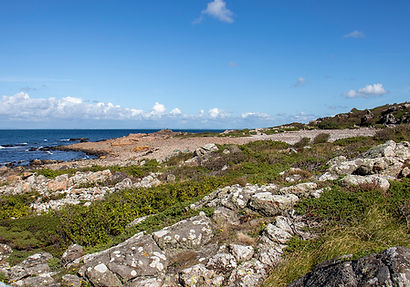 Naturreservat Hovs Hallar/Bjärekustens