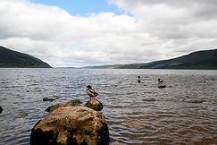 Loch Ness beim Urqhuart Castle