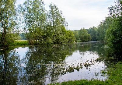 Vogelschutzgebiet Burg Uda