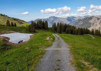 Auf dem Weg ins Tal - Fellhorn