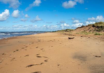 Tönnersa Naturreservat - Strand