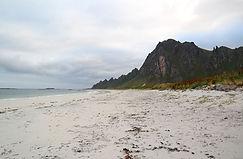 Strand Bleik
