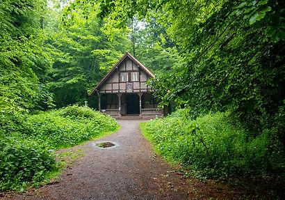 Neuenburger Urwald - Zetel