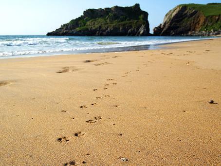 Reisebericht Südengland & Wales - Teil 3