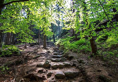 Zittauer Gebirge - Wanderung Jonsdorf