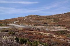 Wanderweg Viewpoint Snohetta