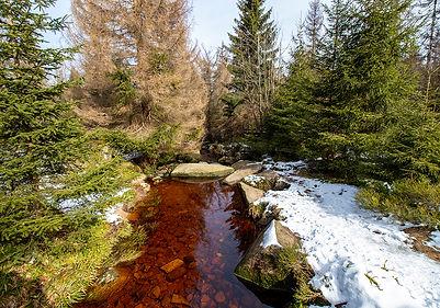 Wanderung Brocken
