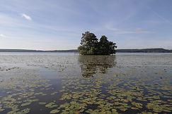 Sigtunafjärden, Schweden