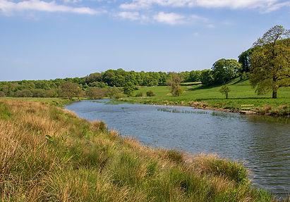 """Fluss """"Aln"""" beim Alnwick Castle"""