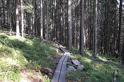 Skulleskogen Nationalpark, Schweden