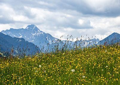 Breitachklamm - Alpe Hinter der Enge
