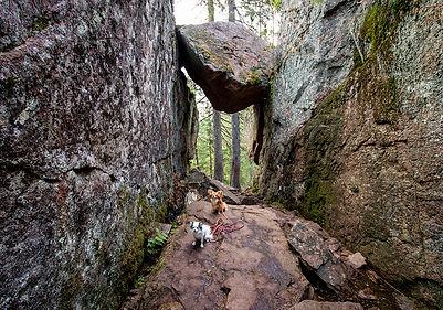 Skuleskogen Nationalpark - Slattdalskreva