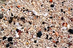 Coral Beach bei Claigan