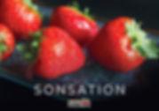 Flevo Berry Breeding B.V..jpg