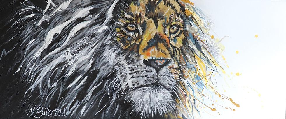 YinYang lion.jpg
