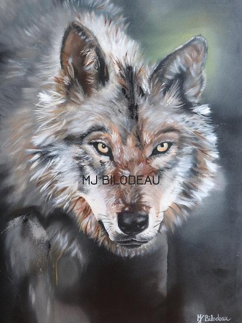 Toile loup