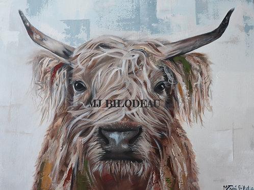 Toile vache highland