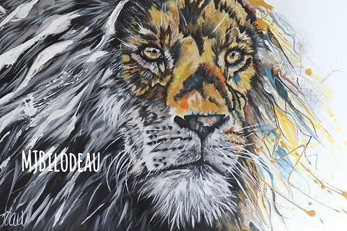 Lion Yin Yang