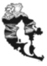 Salty Fox logo vectorized.jpg