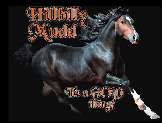 newhillbillyhorse.png