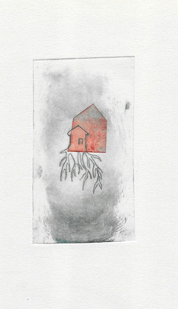 maison-racine  1