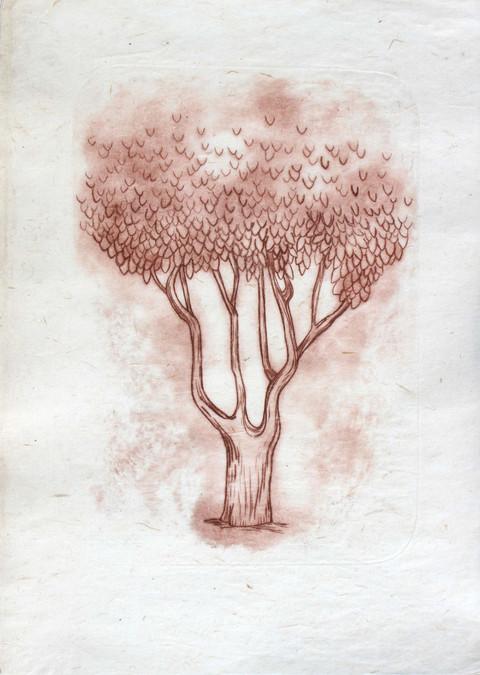 arbre_1_sépia_modifié.jpg