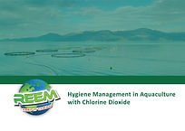 reem_surface_disinfectant_hygiene_manage