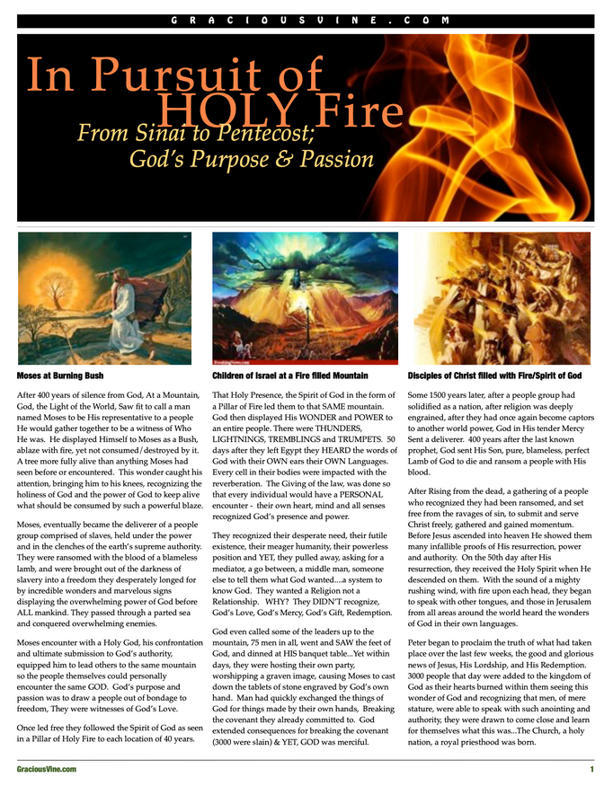 Pursuit of HOLY FIRE