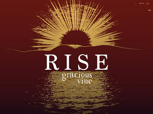 RISE, New cd 2017 (physical cd mailed)