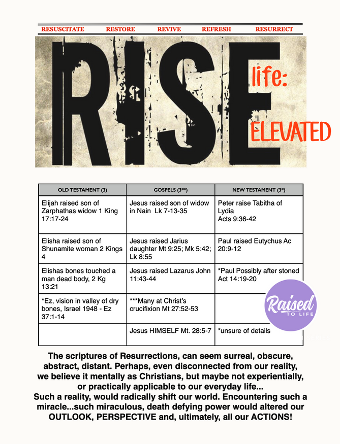 RISE: life elevated