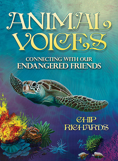 Animal Voices: Wisdom Cards for Kids