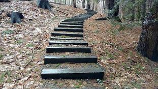 Steps in Woods.jpg
