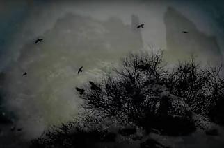 Ravens Night Sky.png