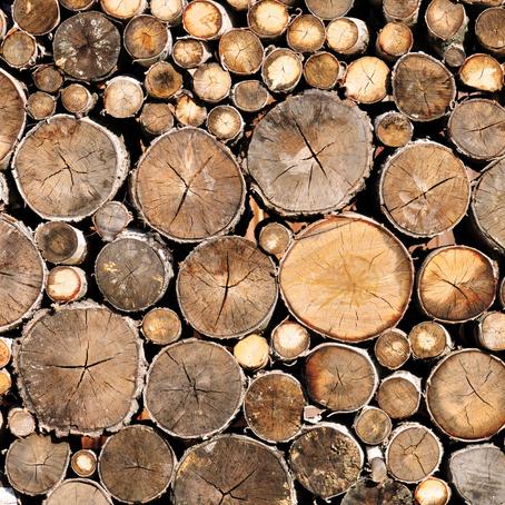 Quel bois est-il conseillé d'utiliser dans le poêle à bois ?