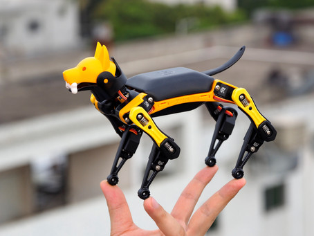 Petoi Bittle, the Palm-sized, Trick Playing Robot Dog, Successfully Raised $567K on Kickstarter