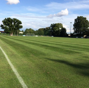 Takeley pitch looking in fantastic condition ready for the new season ☀️🌱⚽️
