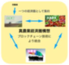 真農業経済圏構想.png
