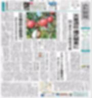 山形新聞掲載 日本環境教育実践会