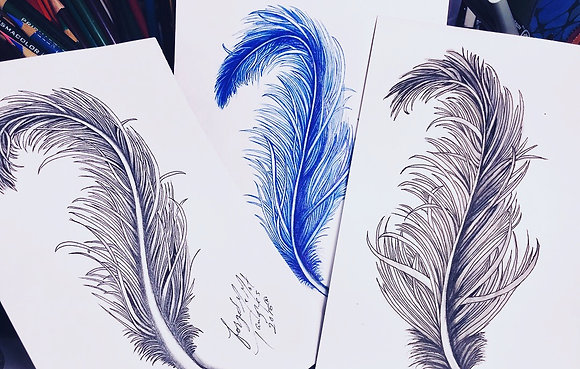 Feathers Made Simple PDF Syllabus