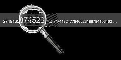 Fingerprint - Transparent.png